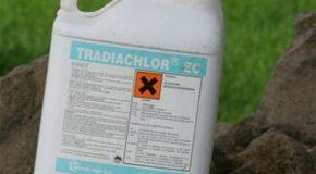 Pesticides et santé – La liste des maladies qu'ils provoquent s'allonge